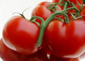 Lakier ze skórek pomidorów podbija UE