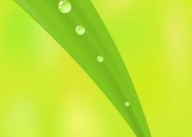 Ekologiczne farby – już 85 mld $ w 2018