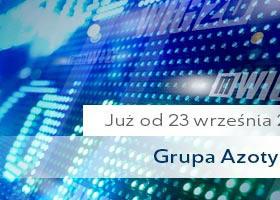 Grupa Azoty w WIG30