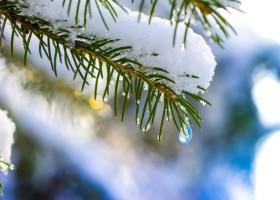 Śnieżka inspiruje zimą