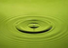Farby wodorozcieńczalne przyszłością branży