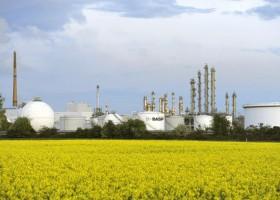 Dyspersje BASF na bazie odnawialnych surowców