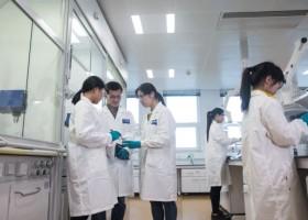 BASF bada lakiery samochodowe w Chinach