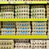 Biopolimery jako powłoki – szybko rosnący rynek