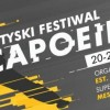 Alcea Polska sponsoruje Tyski Festiwal Capoeira 2017