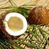 Olej kokosowy a samonaprawa farby epoksydowej