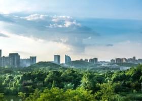 Zielone miasta dzięki Urban Nature Alliance