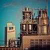 Przemysłowe farby posadzkowe do 2024 – raport