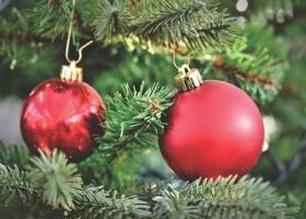 Firma Bato nieczynna w okresie Świąt i Nowego Roku