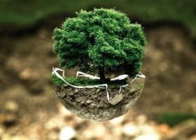 Axalta finansuje organizacje ekologiczne w Europie