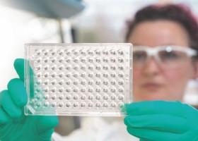 Nowe powłoki dla hodowli komórkowych od faCellitate