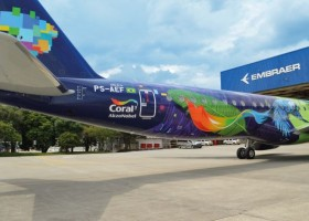 Papuzi samolot z farbami AkzoNobel
