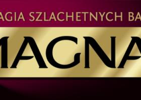 Nowy wizerunek marki Magnat