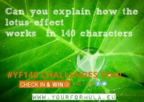 Opisz efekt lotosu i wygraj bilet na konferencję!