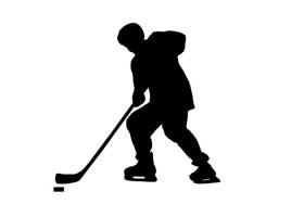 Covestro partnerem niemieckiej ligi hokejowej