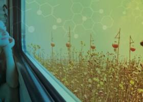 Imagine Chemistry – znamy finalistów!
