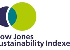 AkzoNobel i BASF na Dow Jones Sustainability Index