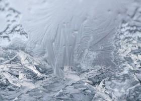 Antarktyczne ryby pomagają w walce z lodem