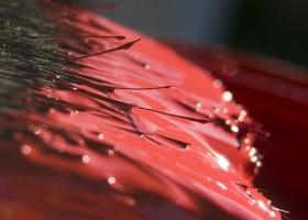 Evonik z nagrodą za poprawę reologii farb wodnych