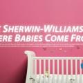 arch. Sherwin Williams