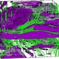 Obraz uzyskany przez naukowców z LCN - trójwymiarowy fragment powłoki o rozmiarach 10x10x10 μm, na którym widać przepływ jonów (kolor zielony) blokowany przez płytki aluminium (kolor fioletowy). Fot. arch. LCN