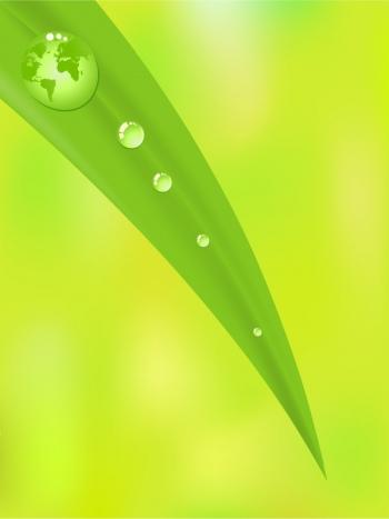 ekologiczne farby
