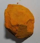 Żółcień indyjska. Fot. Wikimedia Commons