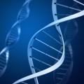 ogniochronne powłoki DNA