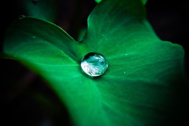 superhydrofobowość dobra adhezja