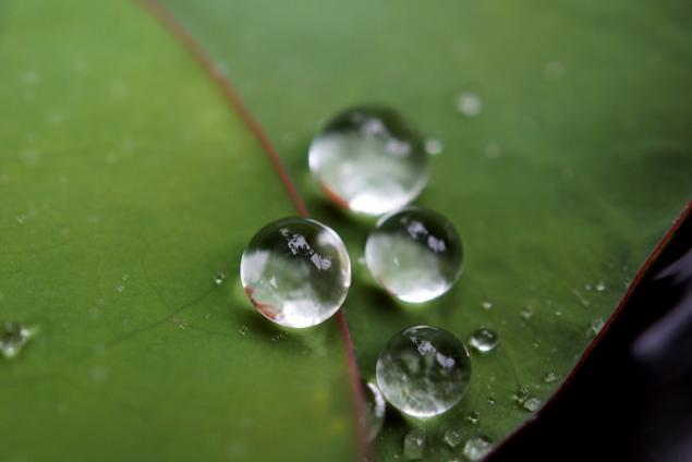 superhydrofobowe powłoki