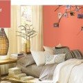 sherwin-williams-coral-reef-kolor roku