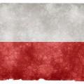 polski rynek farb