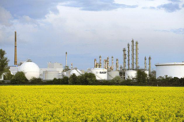 BASF dyspersje surowce odnawialne
