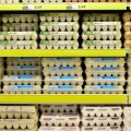 biopolimery opakowania rynek raport Global Market Insights