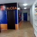 Alcea Kazachstan