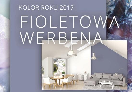 Fioletowa Werbena Dekoral