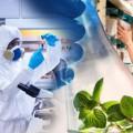 EUON nanomaterialy Unia Europejska