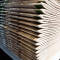 BASF dyspersje do papieru papier
