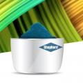 YInMn-Blue Shepherd Color