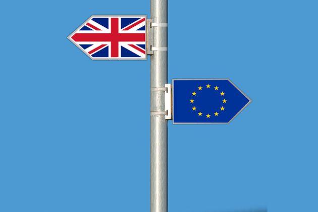 brytyjscy producenci Brexit sondaż BCF