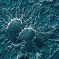 powłoka superhydrofobowa aluminium medycyna branża morska
