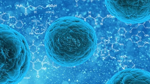 Bodo Möller Chemie Sanitized Europa Wschodnia