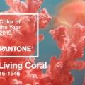 Kolor Roku 2019 Pantone
