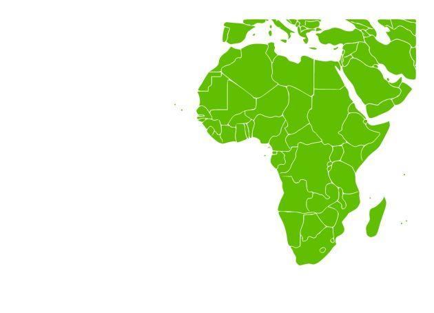 Bliski Wschód i Afryka rynek farb
