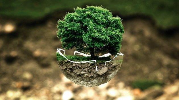 Axalta organizacje ekologiczne Europea EMEA