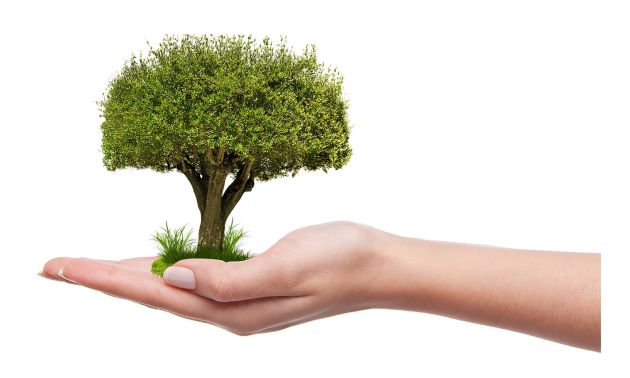 Azelis Together for Sustainability