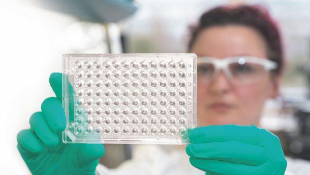 faCellitate BASF powłoki hodowle komórkowe
