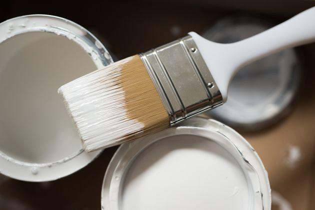 sondaż Dutch Boy Paints